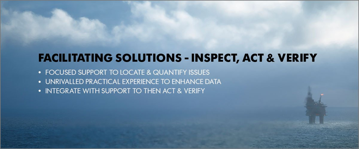 FACILITATING SOLUTIONS - INSPECT, ACT & VERIFY